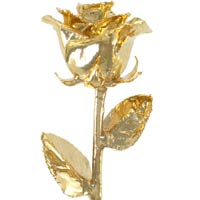 17Inch 24kt Gold Dipped Rose